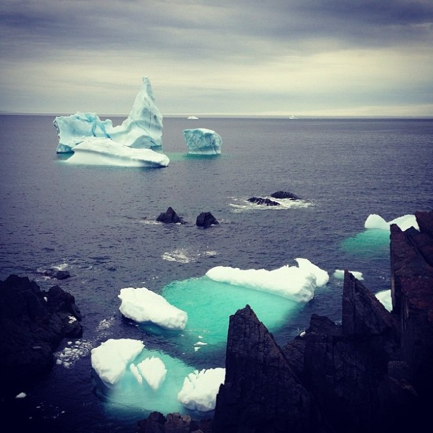 Some Ice - Bonavista - Newfoundland
