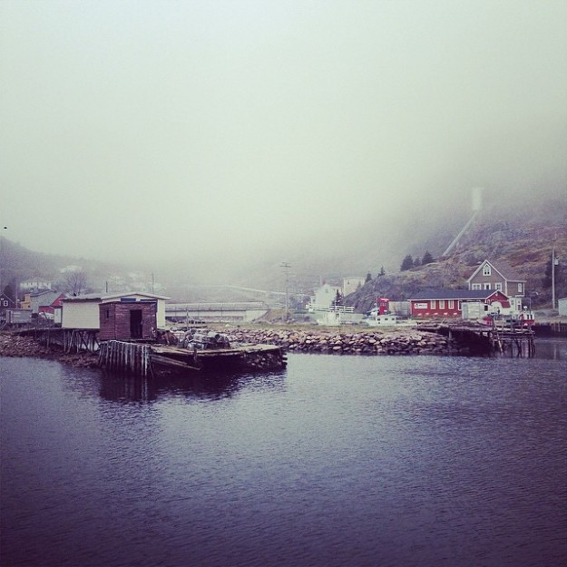 Somewhere in Newfoundland